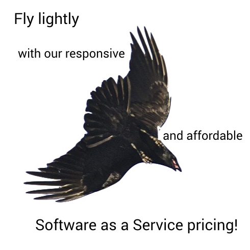 Software as a service pricing