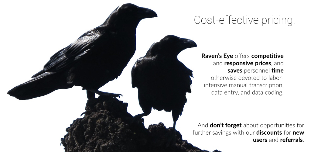 Raven's Eye offers cost-effective software as a service prices